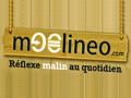 Moolineo